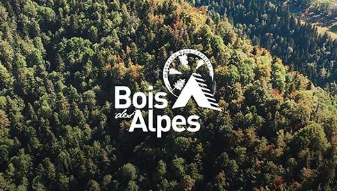 bois des alpes traçabilité des bois alpins français
